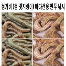 청 갯지렁이 (동결 건조 미끼)